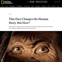 This Face Changes the Human Story. But How?