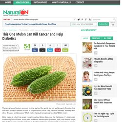 This One Melon Can Kill Cancer and Help Diabetics