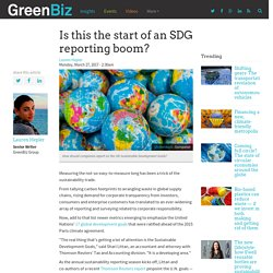 Is this the start of an SDG reporting boom?