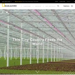 This Tiny Country Feeds the World