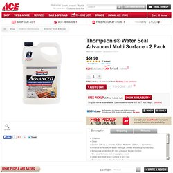 Thompson's® Water Seal Advanced Multi Surface - 2 Pack - Exterior Stain & Sealer - Ace Hardware