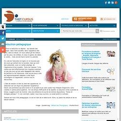 2013 Les outils du web 2.0 Site repertoire