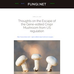 Thoughts on the Escape of the Gene-edited Crispr Mushroom from US regulation — Fungi.net
