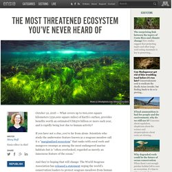 The most threatened ecosystem you've never heard of