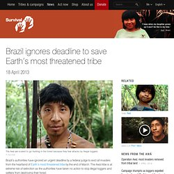 Brazil ignores deadline to save Earth's most threatened tribe