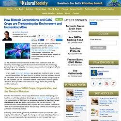 GMO Crops Threaten Life Itself