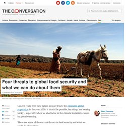 Four threats to global food security and what we can do about them