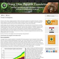 Threats to Orangutans