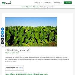 Kỹ thuật trồng khoai môn - AZ Farming