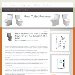 Kohler Adair One Piece Toilet In Thunder Gray Color: Give Your Bathroom A Bit of Color! - Real Toilet Reviews