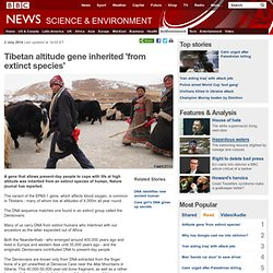 Tibetan altitude gene inherited 'from extinct species'