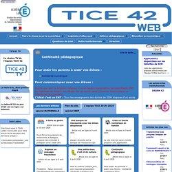 TICE 42