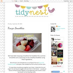 The Tidy Nest: Freezer Smoothies