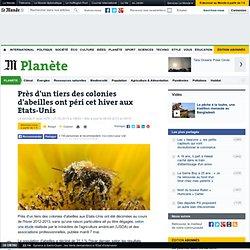 Près d'un tiers des colonies d'abeilles ont péri cet hiver aux Etats-Unis