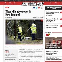 Tiger kills zookeeper in New Zealand