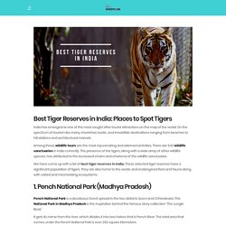 Best Tiger Reserves in India: Best Places to Spot Tigers