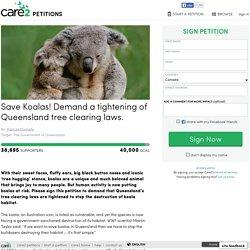 texte de la pétition: Save Koalas! Demand a tightening of Queensland tree clearing laws.