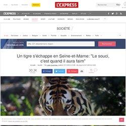 """Un tigre s'échappe en Seine-et-Marne: """"Le souci, c'est quand il aura faim"""""""