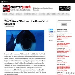 The Tilikum Effect and the Downfall of SeaWorld