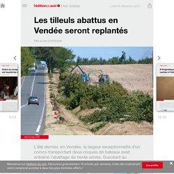 Les tilleuls abattus en Vendée seront replantés - Edition du soir Ouest France - 28/12/2015