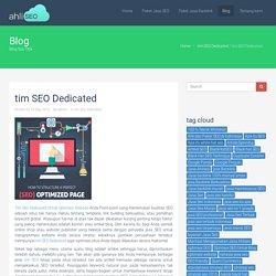 tim SEO Dedicated