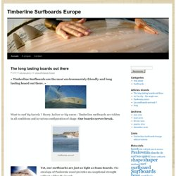 Timberline Surfboards Europe