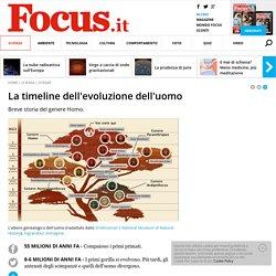 La timeline dell'evoluzione dell'uomo