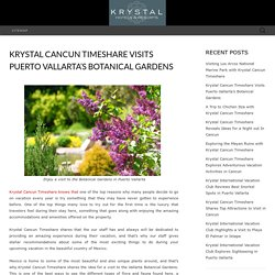 Krystal Cancun Timeshare Visits Puerto Vallarta's Botanical Gardens - Krystal International Vacation Club Reviews