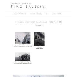 Timo Sälekivi - visual artist