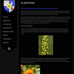 Plantes tinctoriales et techniques médiévales de teinturiers.