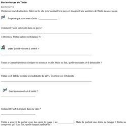 Tintin Questionnaire 2