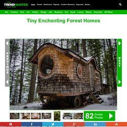 Tiny Enchanting Forest Homes : Forest Home