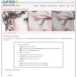 TIPE 2009-2010 Surfaces » fuscia
