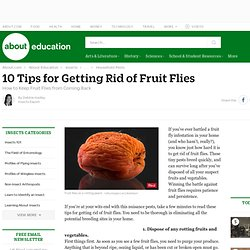10 Tips for Getting Rid of Fruit Flies