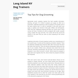 Top Tips for Dog Grooming - Long Island NY Dog Trainers