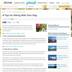 4 Tips for Hiking With Your Dog