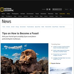 Tips on How to Become a Fossil