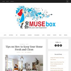 Tips on How to Keep Your Home Fresh and Clean - The Muse Box