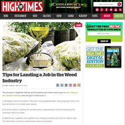 Tips for Landing a Job in the Weed Industry