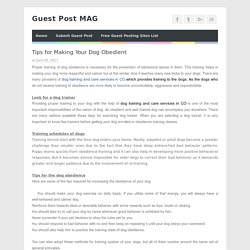 Tips for Making Your Dog Obedient - Guest Post MAG