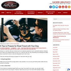 6 Tips to Prepare for Road Travel with Your Dog