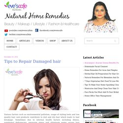Evescafe - Tips to Repair Damaged hair
