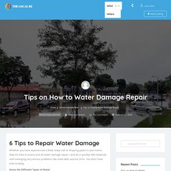 Tips on How to Water Damage Repair - The Local BZ