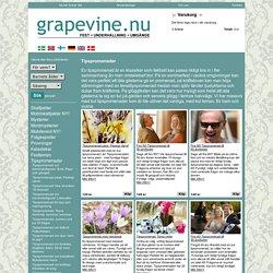 Tipspromenad för alla tillfällen | Grapevine.nu