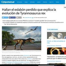Tiranosaurios: hallan el eslabón perdido deTyrannosaurus rex