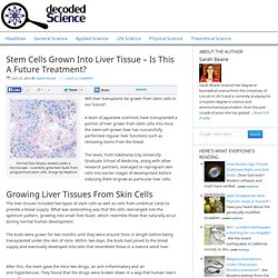 Stem Cells Grown Into Liver Tissue and Blood Vessels: Future Medicine?