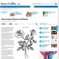 How to Draw Flowers and Plants""