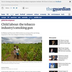 Child labour: the tobacco industry's smoking gun