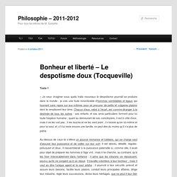 Bonheur et liberté – Le despotisme doux (Tocqueville)