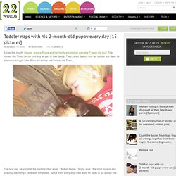 Toddler naps with his 2-month-old puppy every day [15 pictures]